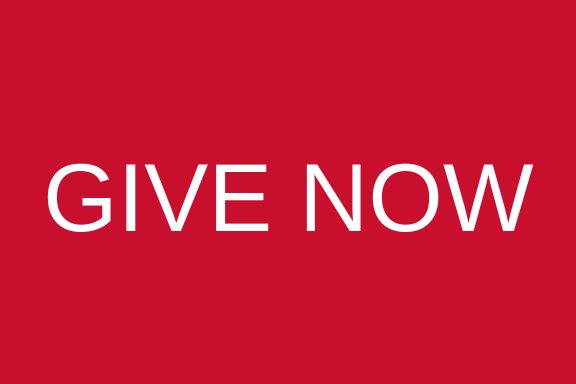 Give now button for Geology and Environmental Geosciences Campaign
